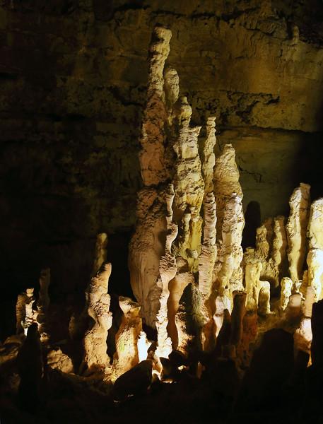 A dense cluster of stalagmites