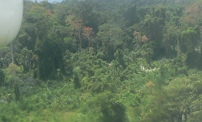Panama_Darien jungle_2007