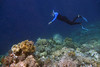 Snorkeling over the edge of the reef.  Many thanks Detlef Sacker for this and another later photo of me.