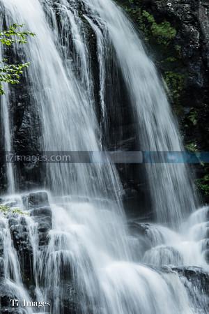 T7 Images- WEB Site-18
