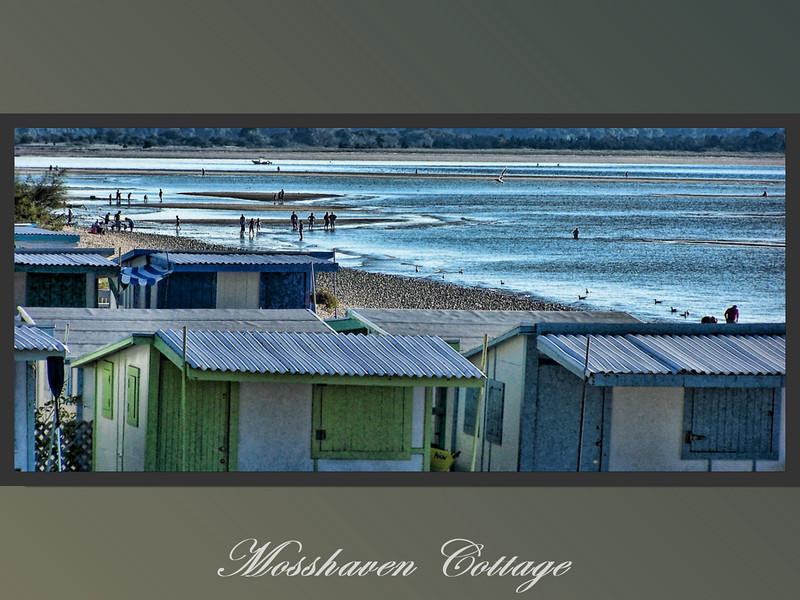 Mosshaven Slideshow5-79