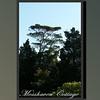 Mosshaven Slideshow5-60