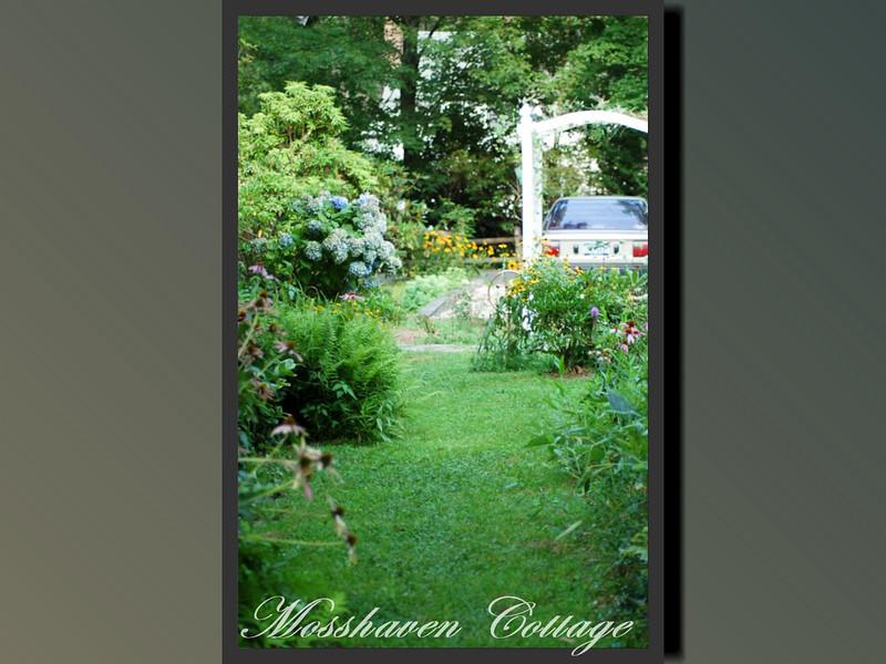 Mosshaven Slideshow5-53