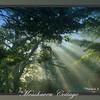Mosshaven Slideshow5-02