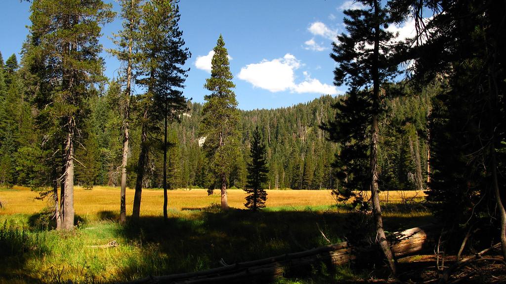cahoon meadow