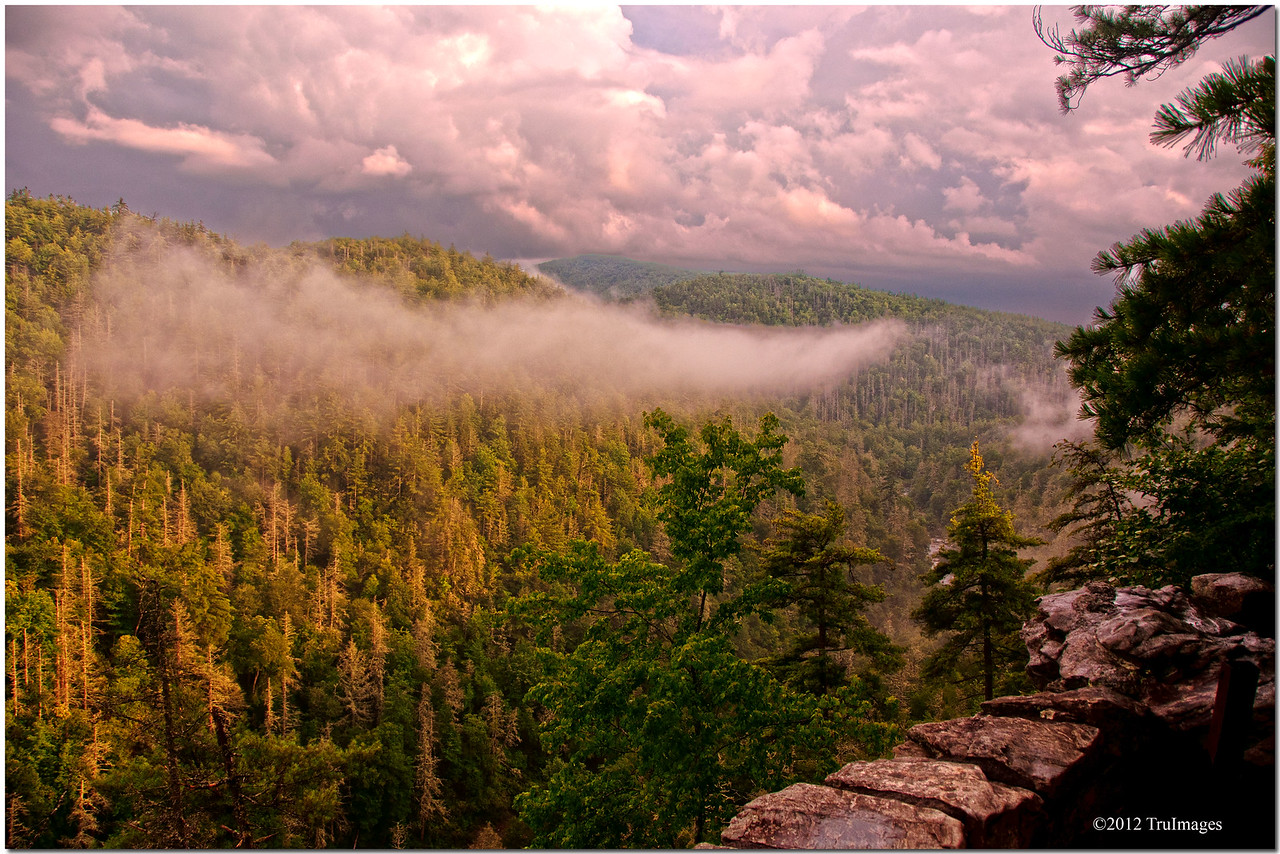 Jul 31<br /> The wilderness<br /> <br /> We hiked to the top where an overlook existed where we could look down on Linville Falls below. Breathtaking views in every direction! <br /> A rain shower had just passed, but not before dumping most of its rain on us during our hike to the overlook! The views were worth it!