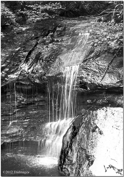Aug 5<br /> monochromatic falls<br /> <br /> This little gem was roadside on the Blue ridge parkway in the NC mountains.