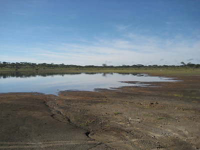 Ndutu watering hole 5