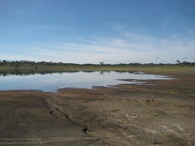 Ndutu watering hole 5