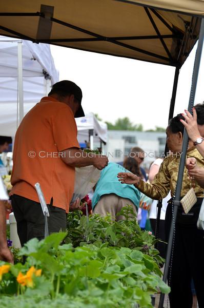 Omaha Farmer's Market - Herbs & Vendor