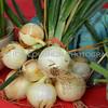 Omaha Farmer's Market - Onion
