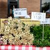 Omaha Farmer's Market - Green Onions & Chives