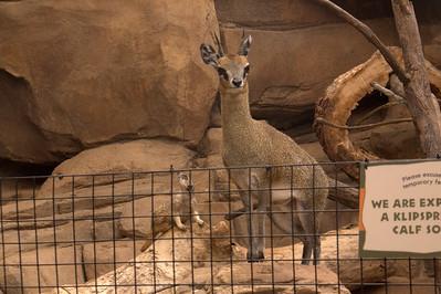 Omaha, NE Henry Doorly Zoo