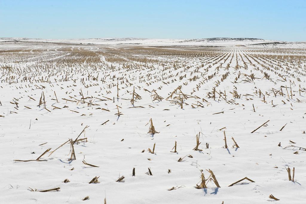 Nebraska Winter