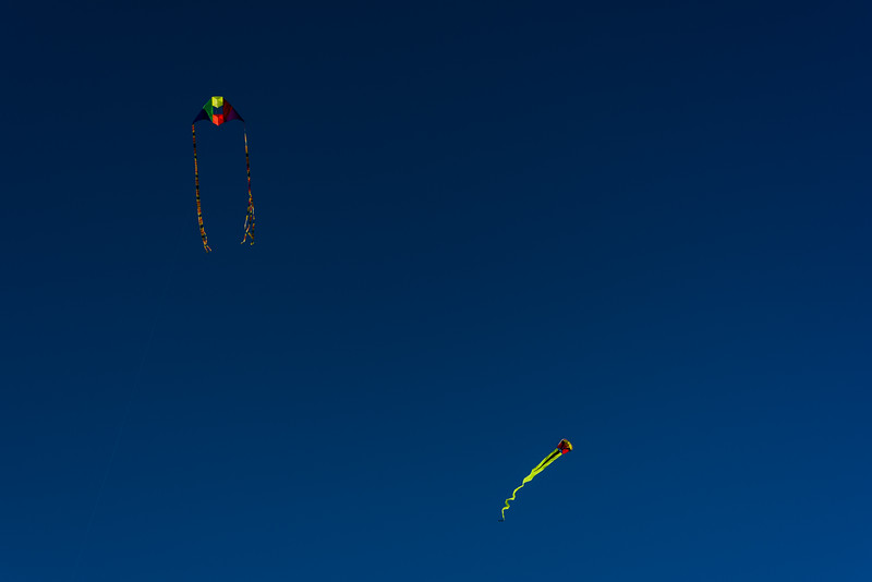 Twin fliers: box/delta & parasail
