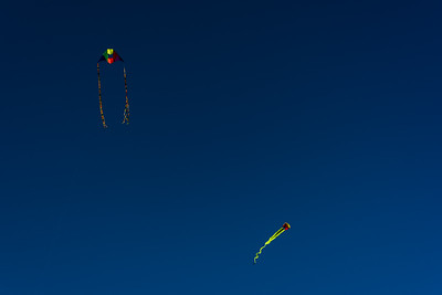 Twin fliers: box/delta & parasail