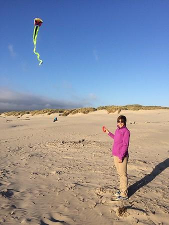 Jellyfish parasail kite