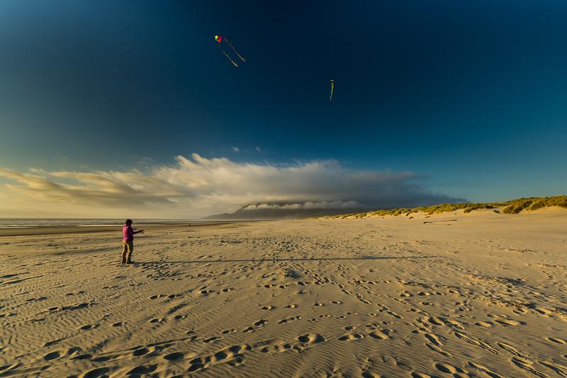Sky, beach and kites.
