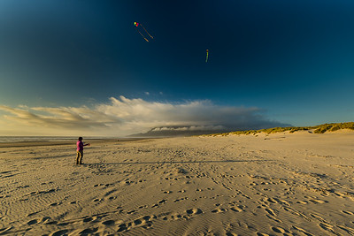 Sky, beach and kites.