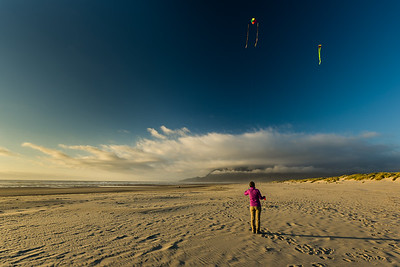 Kites in the endless sky.