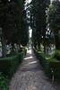 Roma_012-IMG_0190