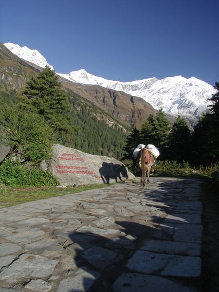 Kalopani. Annapurna Circuit