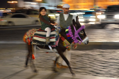 Donkey Ride in Doha, Qatar (c) 2012 Karin Markert, kmarkert88@gmail.com, all rights reserved.