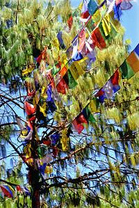 Buddhist Prayer Flags at Haatiban, sout of Kathmandu, Nepal (c) 2012 Karin Markert, kmarkert88@gmail.com, all rights reserved.