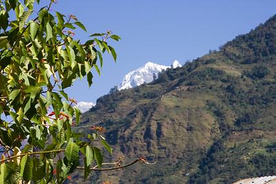 Nilgiri peaking over the valley