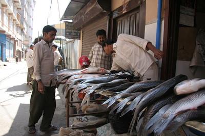 Fishmonger in Thamel, Kathmandu. Smells fishy