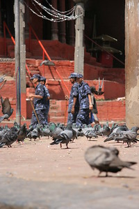 Pigeons and soldiers at Durbar Square, Kathmandu