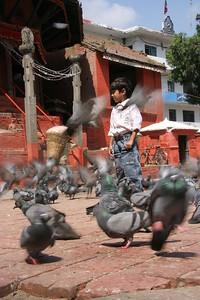 boy and pigeons at Durbar Square, Kathmandu