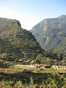 These small terraced fields go way up the hill side.