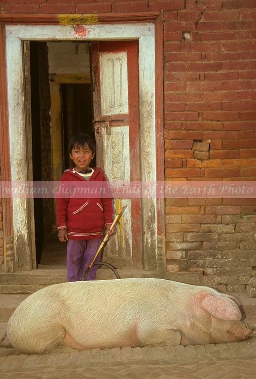 Village Life in Nepal asia
