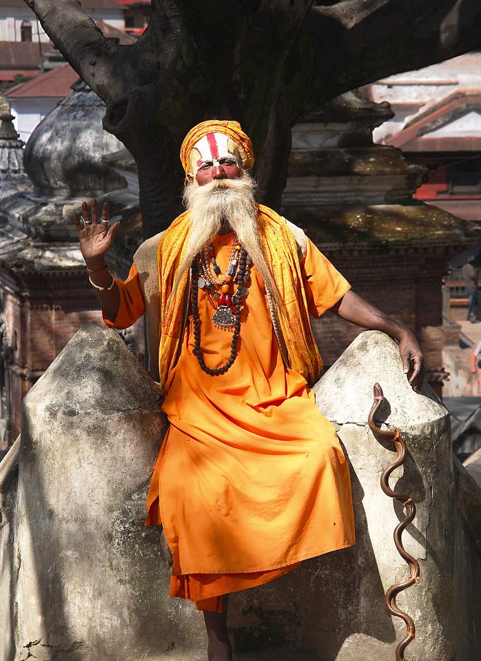 sadhu and snake 13