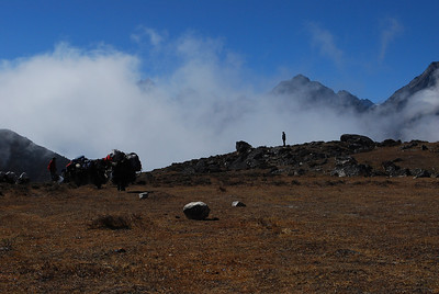 Tsering, yeah, it is you, standing in front of cloud.