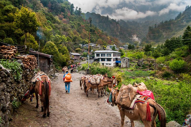 Village in the Marsyanda Valley