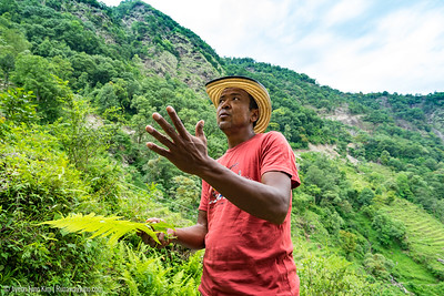 Our guide Nima explaining important local plants