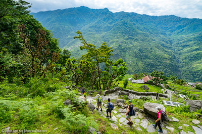 Out trekking group walking down from Ghandruk