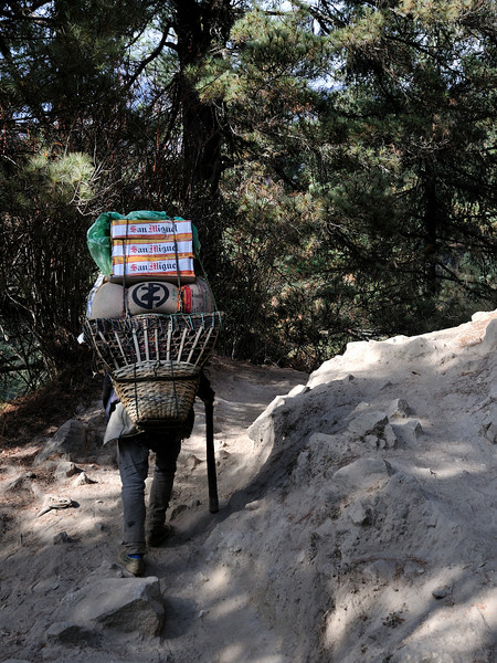 There are no roads in the Khumbu region so everything needs to be carried in by yak, or by porters.  The alternative of flying in cargo by helicopter is too expensive for most types of supplies. This is on the steep section below Namche Bazaar.