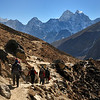 The dusty path down the Khumbu valley.