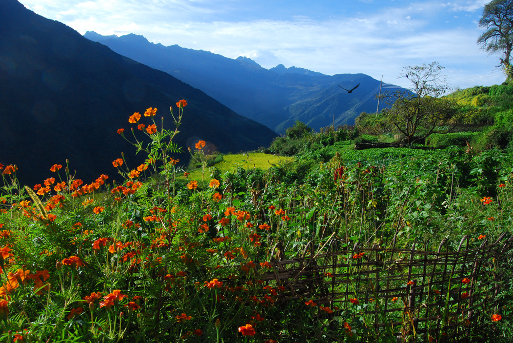 Trek in Nepal.
