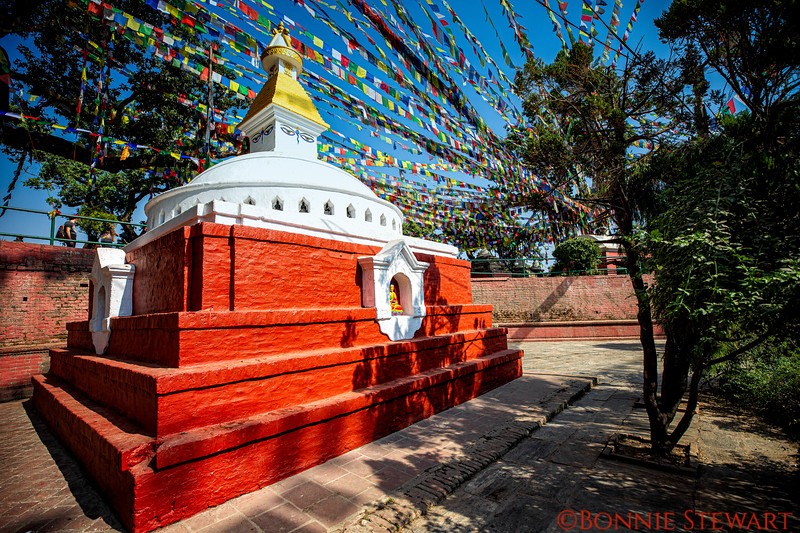 A Temple in the Buddha Stupa complex
