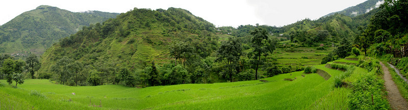 Panoramic view of the rice plantations in Ngadi, at the begining of the Annapurnas trek.