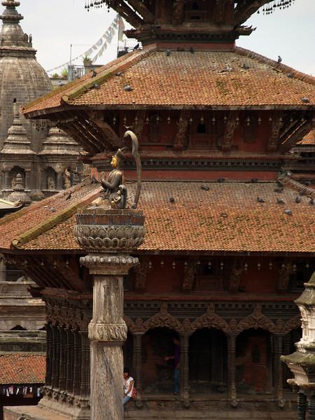 Cobra in Patan
