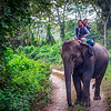 Local Transportation in Chitwan
