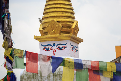 2013 Nepal