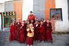 Excited group of youg monks, around 6 - 7 years old