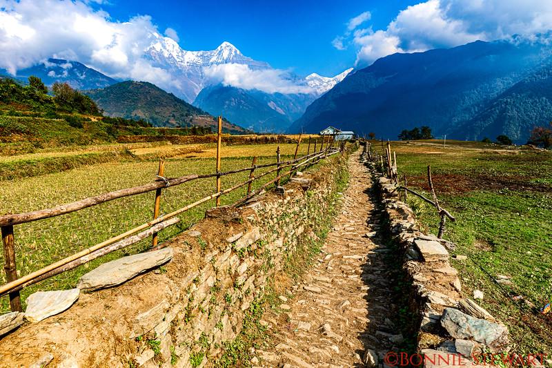 Return trail from the mountainside village of Ghandruk