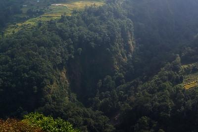Honey Hunting Cliffs